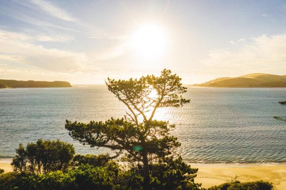 Neuseeland Urlaub Stefan Franke 2019 2