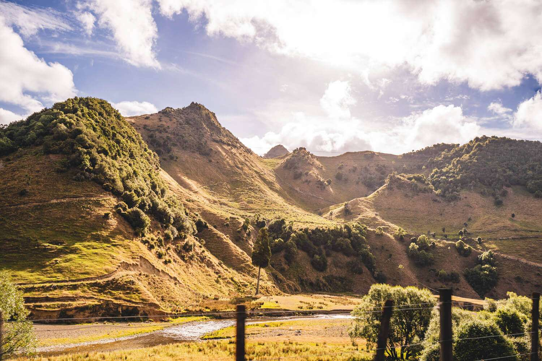 Neuseeland Urlaub Stefan Franke 2019 29
