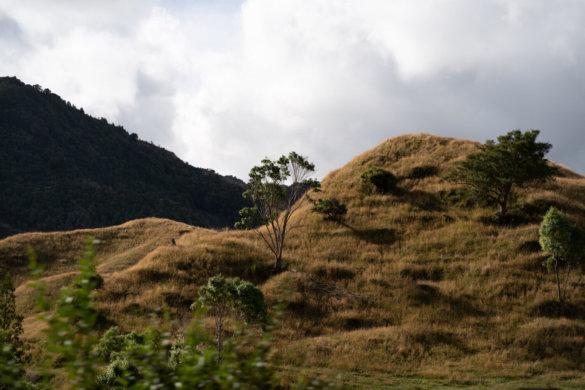 Neuseeland Urlaub Stefan Franke 2019 30