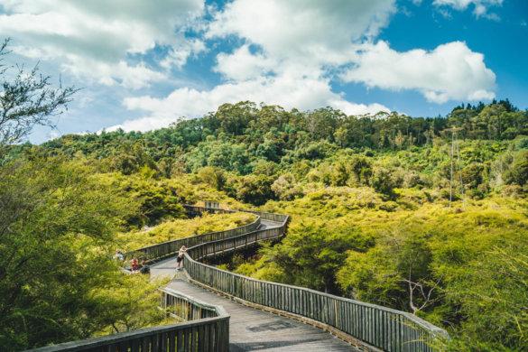 Neuseeland Urlaub Stefan Franke 2019 77