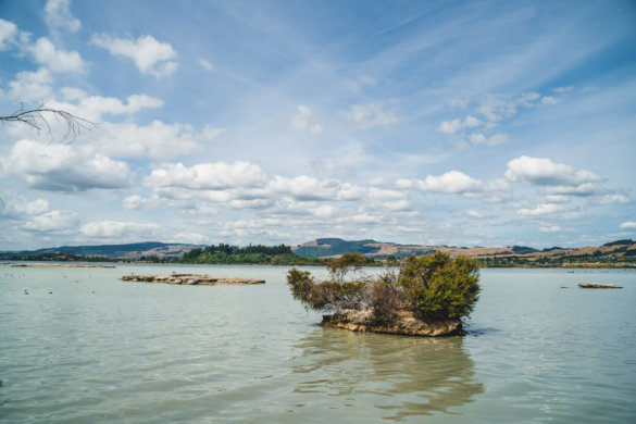 Neuseeland Urlaub Stefan Franke 2019 82