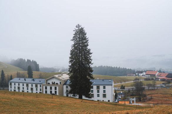 Allgäu Scheidegg 2019 02