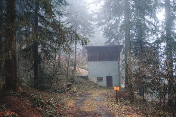 Allgäu Scheidegg 2019 04
