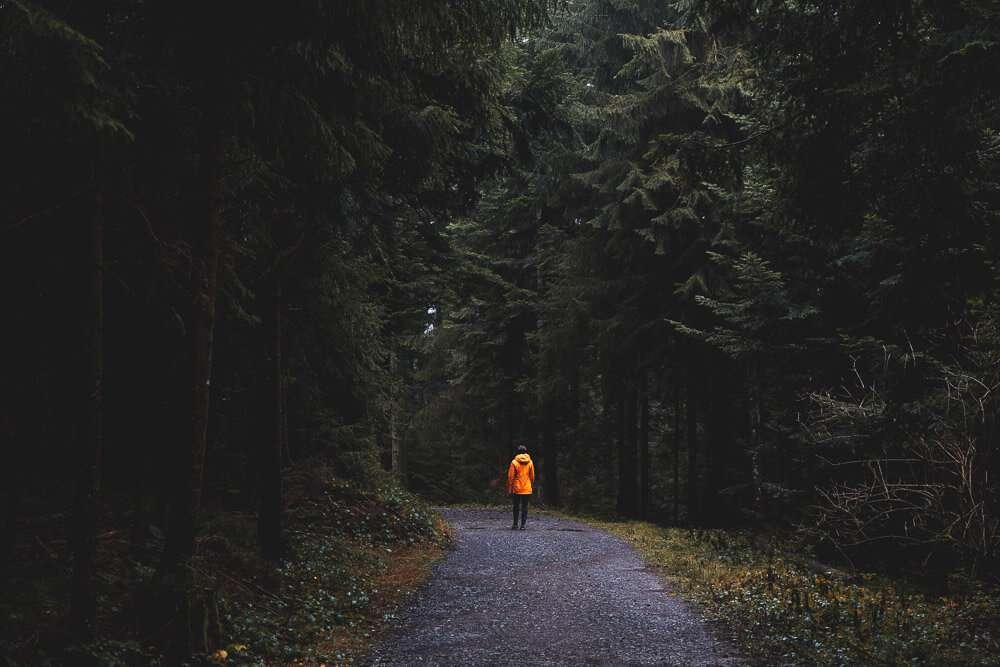 Allgäu Scheidegg 2019 08