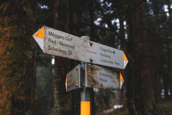 Allgäu Scheidegg 2019 09