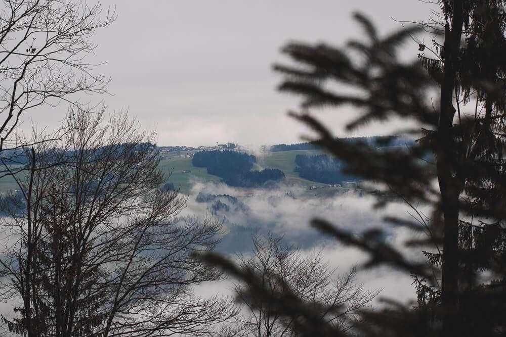 Allgäu Scheidegg 2019 10