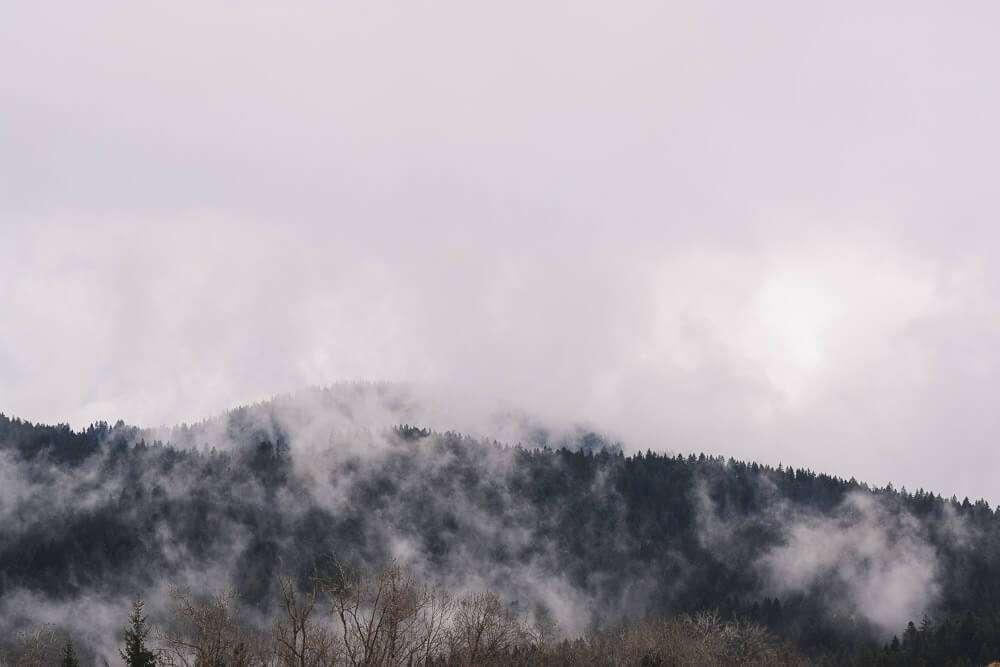 Allgäu Scheidegg 2019 11