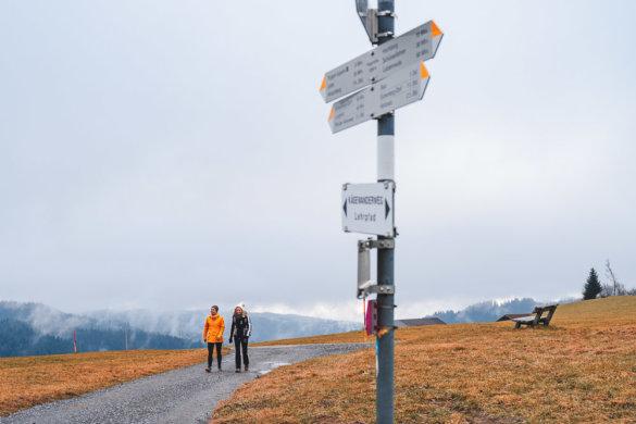 Allgäu Scheidegg 2019 23
