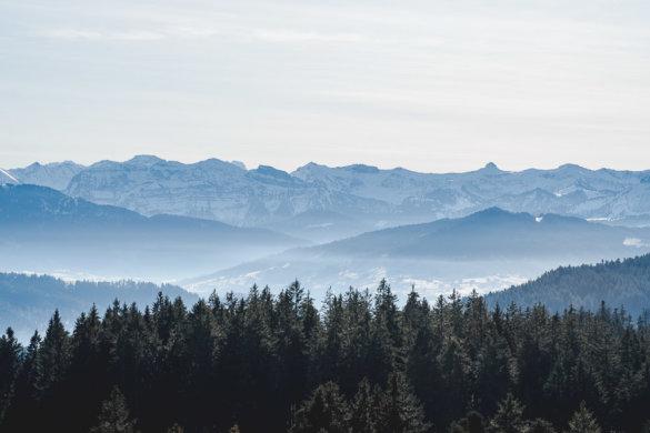 Allgäu Scheidegg 2019 26