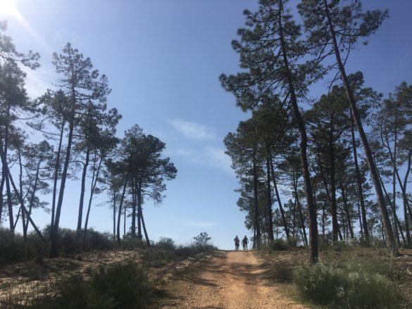 Opel Running Camp 2020 Monte Gordo 94