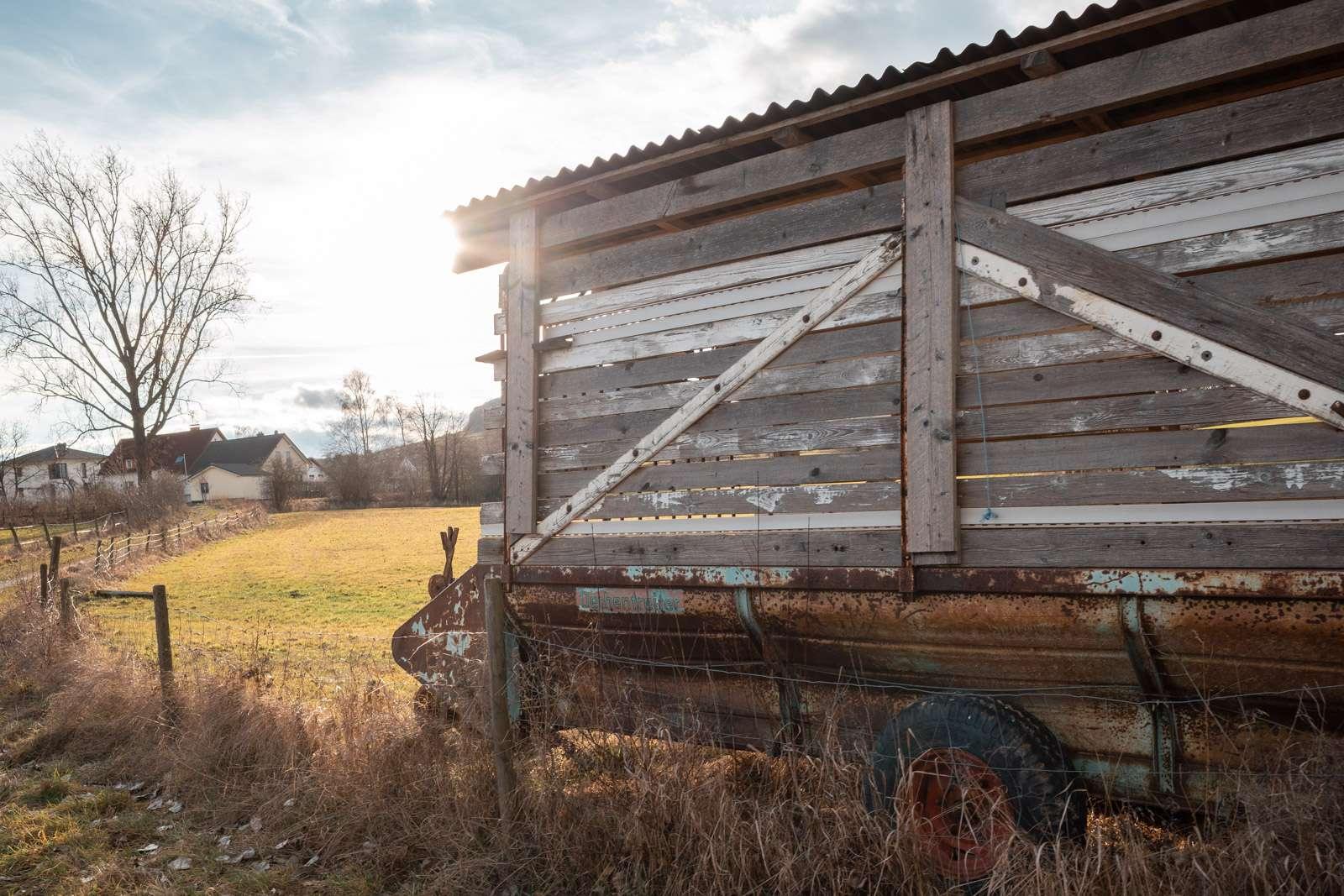 ricoh gr3 Holz auf einem Feld franke 018